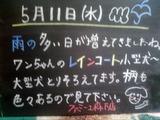 2011/5/11森下