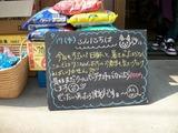 2011/8/17森下