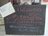 2011/11/22立石