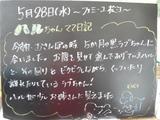 080528松江