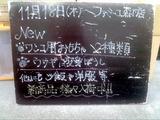 2010/11/18森下