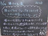 080314松江