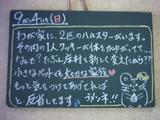 050904松江