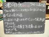 2012/3/20森下