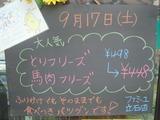 2011/9/17立石