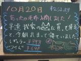 071020松江