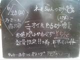 2010/6/20森下