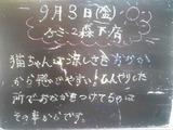 2010/09/03森下