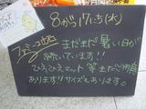 2011/8/17立石
