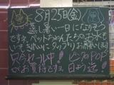 060825南行徳