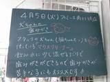 2011/4/5南行徳