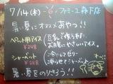 2011/7/14森下