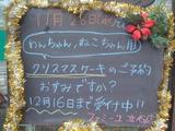 2012/11/28立石