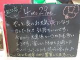 2010/4/29松江