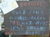 2012/8/8立石