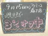 2012/09/15森下