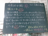 2012/4/20南行徳