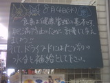 2010/8/4南行徳