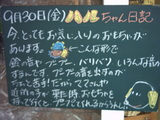 050930松江