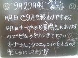 2010/9/29森下