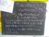 2010/07/06立石
