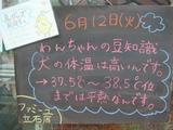 2012/6/12立石