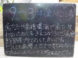 2010/09/03松江