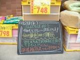 2011/11/2森下