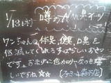 2011/1/13森下