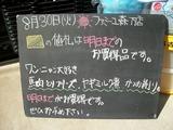 2011/8/30森下