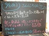 2012/09/08森下