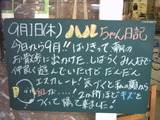 9月1日松江店