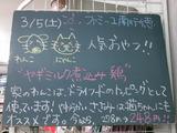 2011/03/05南行徳