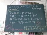2011/6/21南行徳