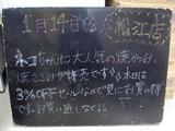 2011/01/14松江