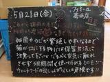 2010/05/21葛西