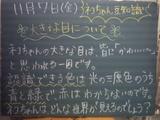 081107南行徳