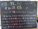 080311松江