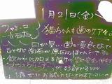 2011/01/21立石