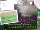 2011/3/10立石