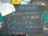 2011/8/18立石