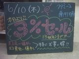 2010/6/10南行徳