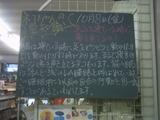2010/10/08南行徳