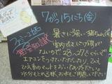 2011/7/15立石