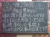 060925南行徳