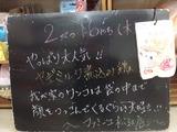 2011/2/17松江