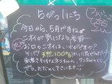 080501立石