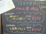 2011/12/03立石