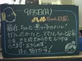 050905松江