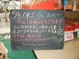 2011/10/5森下